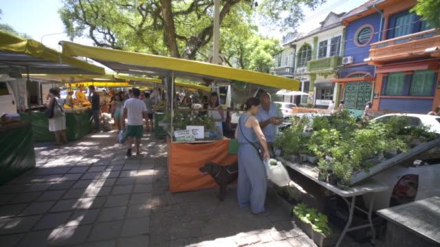 organic market stall - alegre stock videos & royalty-free footage