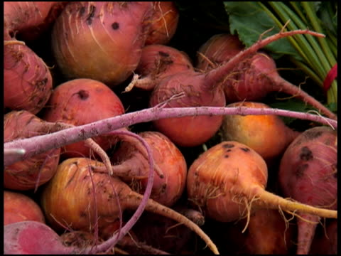 Organic Orange Beets, Beetroot, Swiss Chard