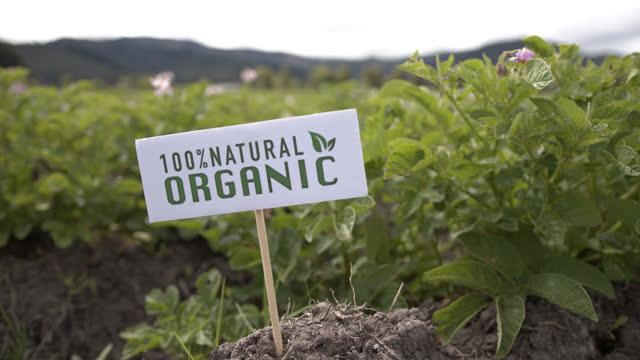 vidéos et rushes de plantation de pommes de terre biologiques dans une ferme latino-américaine affichant une pancarte - signalisation