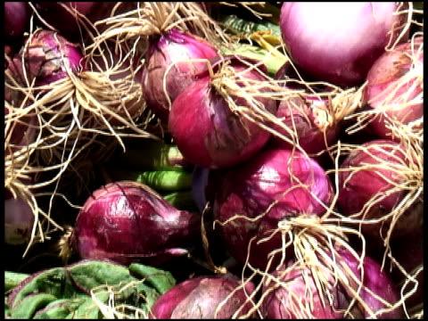 organic red onions / shallots - letterbox format bildbanksvideor och videomaterial från bakom kulisserna
