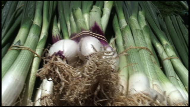 (hd1080i) organic spring onions / scallions - scallion stock videos & royalty-free footage