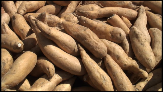 (hd1080i) organic sweet potatoes - heap stock videos & royalty-free footage