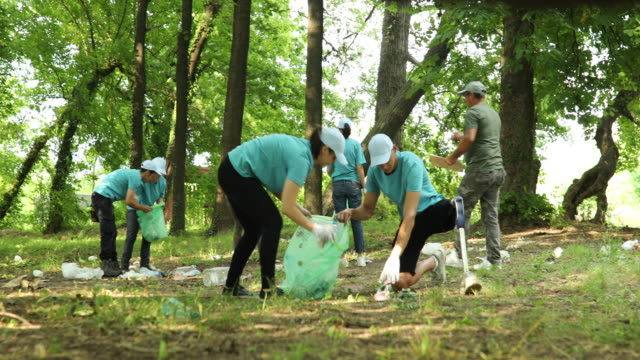 organized volunteers cleaning nature - environmental cleanup stock videos & royalty-free footage