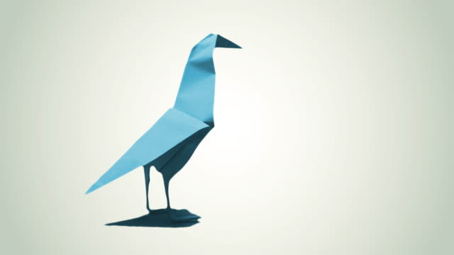 origami bird, 4k - stop motion animation stock videos & royalty-free footage