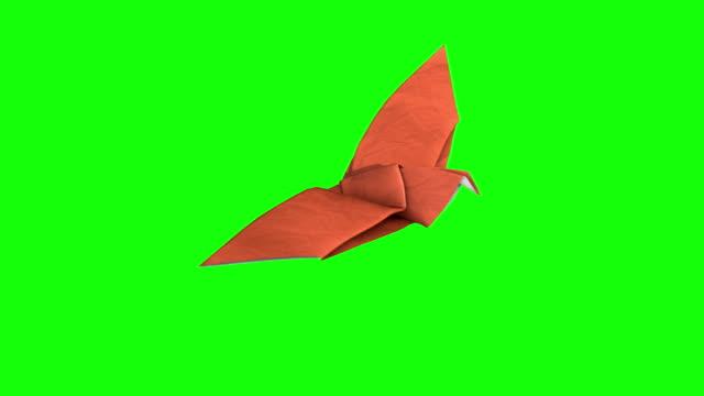 vidéos et rushes de origami dave's'élève - origami