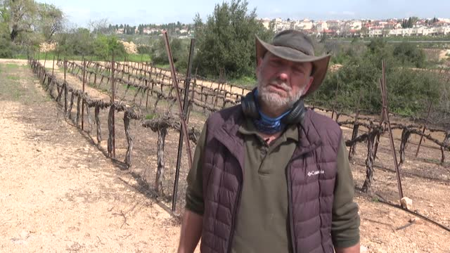 originally from marseilles, in the south of france, yoram bitane believes that benjamin netanyahu is the only one who can achieve the change he... - hebron west bank stock videos & royalty-free footage
