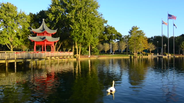 orlando florida lake eola famous chinese structure pagoda on water historical gift from china sister city of guillin red wood called ting - pagoda点の映像素材/bロール