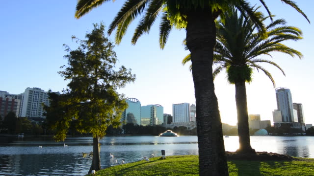orlando florida lake eola take skyline and fountain at  twilight with water and palms - orlando florida stock videos & royalty-free footage
