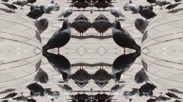 飾り - 雑貨点の映像素材/bロール