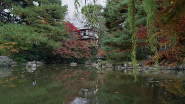 vidéos et rushes de ws ornamental lake in the historic district of kyoto / kyoto, japan - image animée