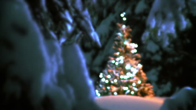 HD: Ornamented Christmas Tree