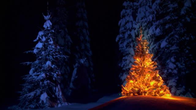 LOOP DE HD: Ornamentados Árvore de Natal