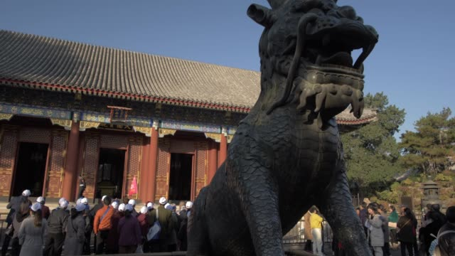 ornate dragon and temple in the summer palace, unesco world heritage site, beijing, people's republic of china, asia - summer palace beijing stock videos & royalty-free footage