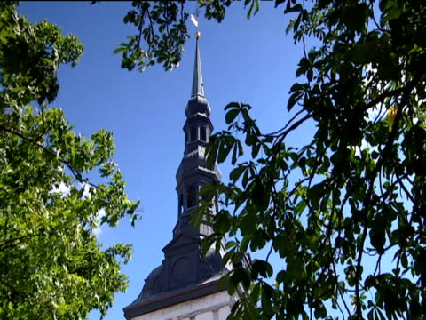Ornate grey church spire surrounded by green leaves swaying gently against clear blue sky. Tallinn.