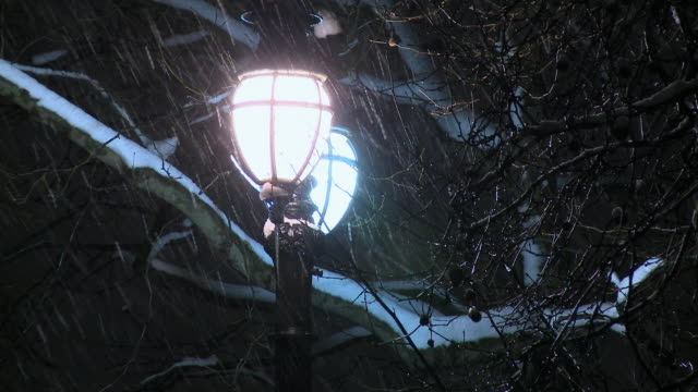 cu ornate street lamp and bare tree branches in snow at night, the mall, london, united kingdom  - city of westminster london stock videos & royalty-free footage