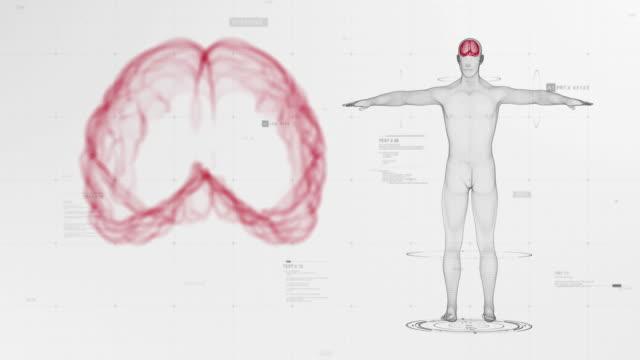 сoronavirus symptoms & compliacations bwr - the human body stock videos & royalty-free footage