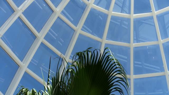 vídeos de stock e filmes b-roll de orquidarium glass dome interior pan - domo
