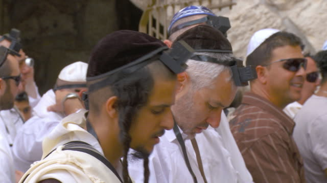 stockvideo's en b-roll-footage met cu orthodox jews praying at wailing wall / jerusalem, israel - gelovige