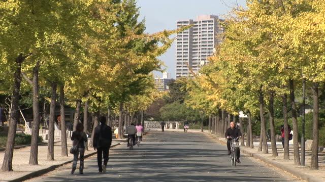 osaka, japanview of fall season in the city of osaka japan - 歩道点の映像素材/bロール