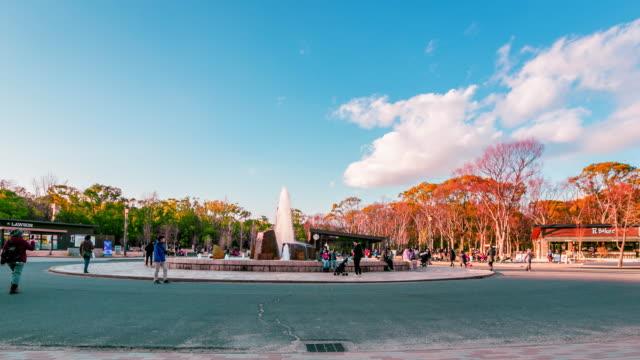 冬の日、日本、時間経過の大阪公園 - 噴水点の映像素材/bロール