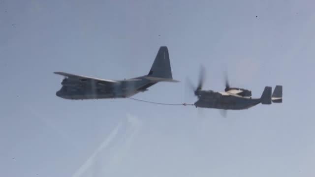 ospreys and a kc-130j hercules, both with marine medium tiltrotor squadron 261 , 24th marine expeditionary unit, conduct aerial refueling training... - medium group of animals点の映像素材/bロール