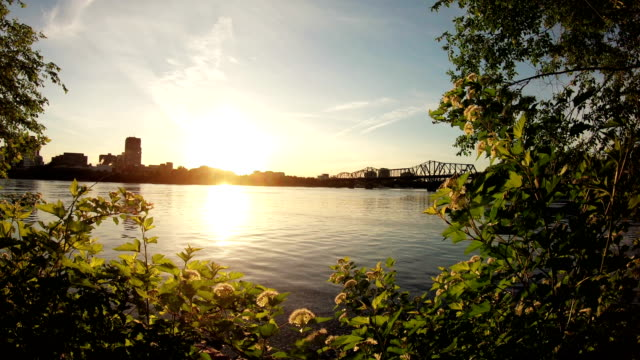 ottawa bridge - ottawa stock videos & royalty-free footage
