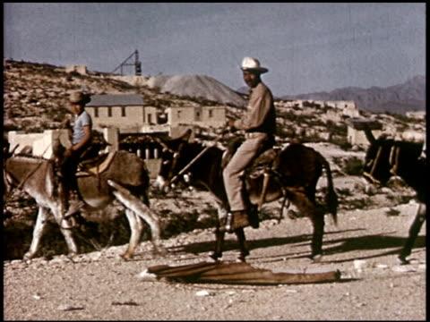 our texas heritage - 12 of 16 - この撮影のクリップをもっと見る 2241点の映像素材/bロール