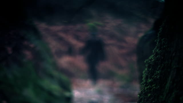 out of focus shots of two policemen walking in the woods - cercare video stock e b–roll