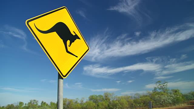 ms outback road sign of 'kangaroo' / karumba, queensland, australia - animal crossing sign stock videos & royalty-free footage