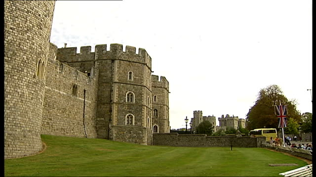 outbreak of foot and mouth disease in surrey surrounding counties affected tourists to and fro general view of windsor castle and swans on lake - aquatic organism stock videos & royalty-free footage