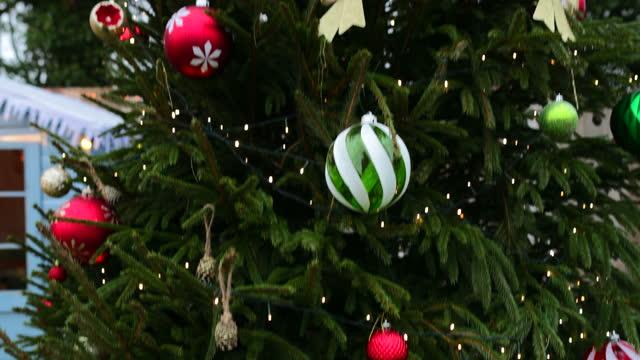 outdoor christmas tree - christmas tree stock videos & royalty-free footage
