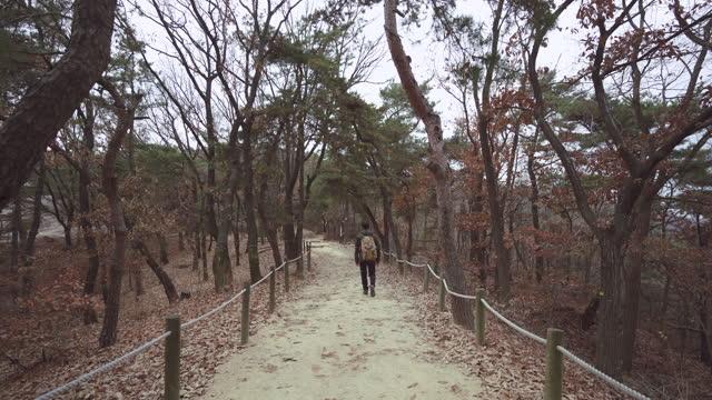 outdoor exercise - young man climbing - koreanischer abstammung stock-videos und b-roll-filmmaterial