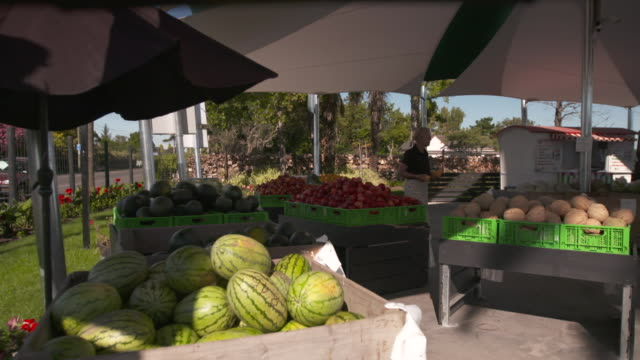 Outdoor fruit stall with watermelons and rockmelons for sale
