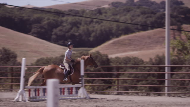 outdoor jumping ring, haley gallops horse, slow motion - hurdling horse racing stock videos and b-roll footage