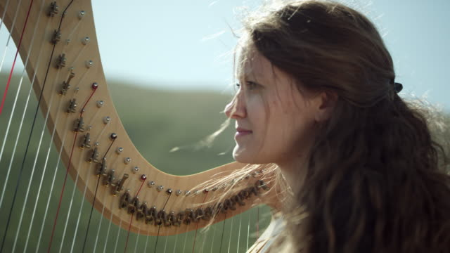 outdoor orchestra - harp - harp stock videos & royalty-free footage