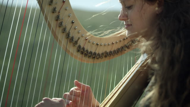 outdoor orchestra - harp - orchestra stock videos & royalty-free footage