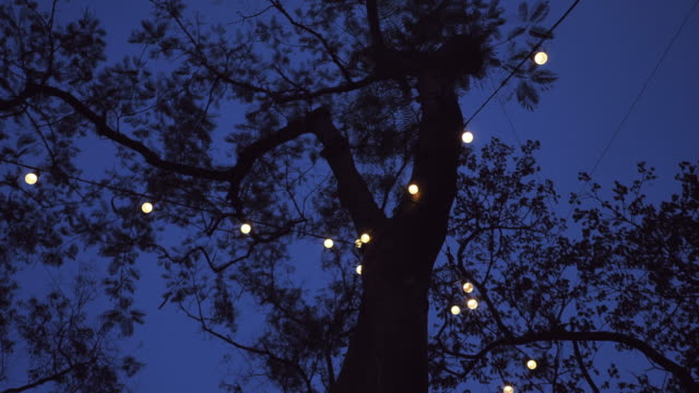 outdoor party lights - ornate stock videos & royalty-free footage