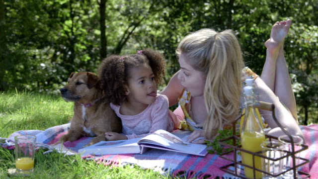 outdoor story time - adoption stock videos & royalty-free footage