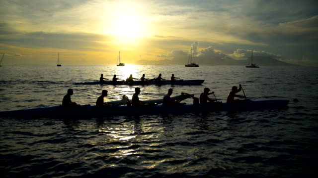 outrigger canoe moorea island from tahiti at sunset - insel tahiti stock-videos und b-roll-filmmaterial
