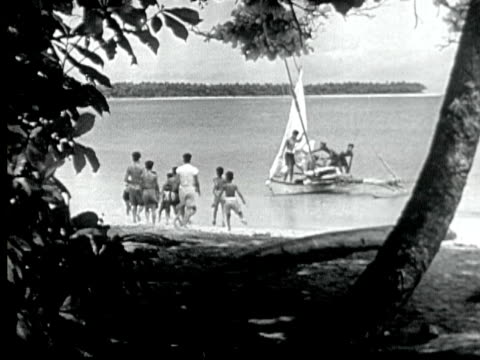 1949 b/w montage outrigger sailboat sails up to beach with large turtle on board. ids run to meet it. men flip turtle into water and ids drag it up onto beach. / likiep, marshall islands - marshall islands stock videos & royalty-free footage