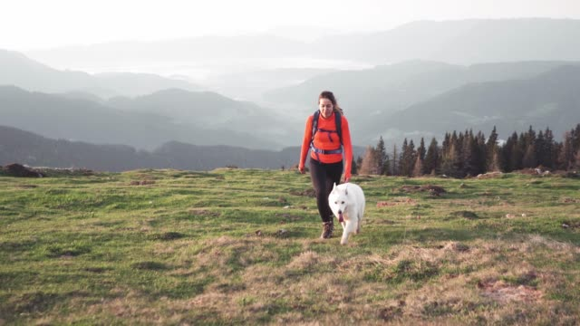 vídeos de stock e filmes b-roll de outsanding mountain view and hiker with her dog - parque natural