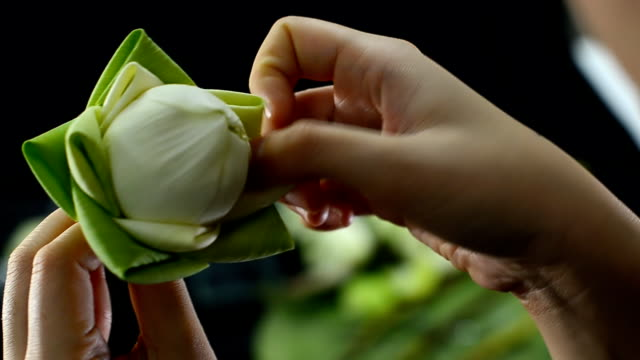 over a shoulder : fold a single petal lotus for respecting buddha religion - arranging stock videos and b-roll footage