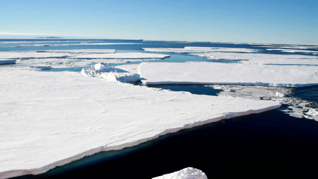 pan over broken floating ice sheets, antarctica - ice sheet stock videos and b-roll footage