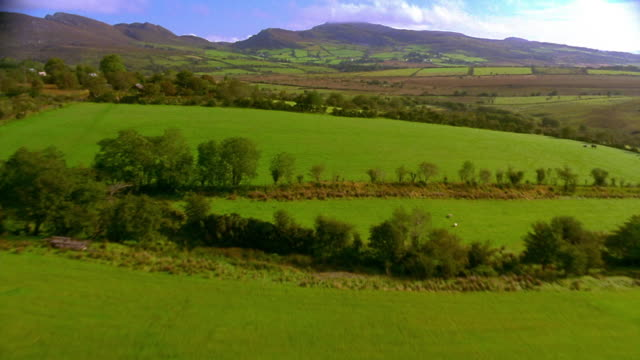 aerial over forest, farmland + rolling hills with mountains in background  / ireland - moving process plate stock videos and b-roll footage