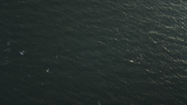 Over open ocean off the New Jersey coast at 1000 feet elevation. No horizon. Shot in November 2011.