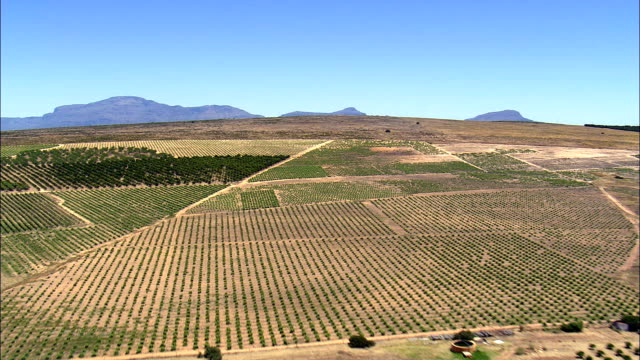 N7 Over Pass And Citrus Fields  - Aerial View - Western Cape,  West Coast District Municipality,  Bergrivier,  South Africa