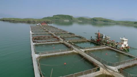 vidéos et rushes de aerial over salmon hatchery / lismore island, western isles, scotland - agriculture