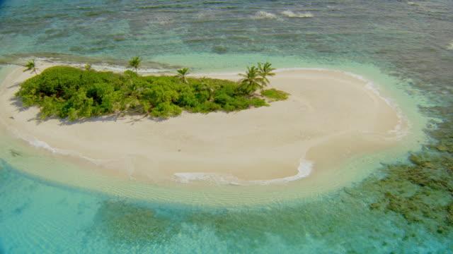 vídeos de stock e filmes b-roll de aerial over small deserted green cay island with palm trees + beach / british virgin islands - banco de areia