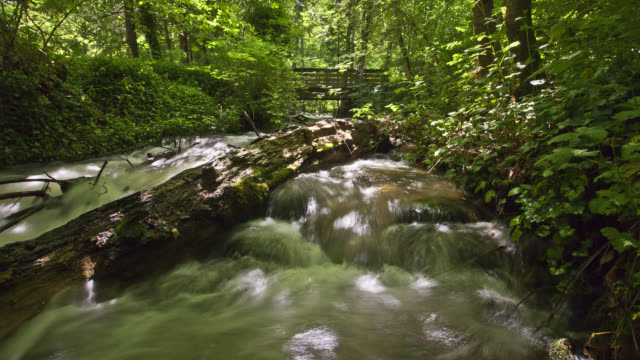 time lapse medium tracking shot over stream flowing over rocks in forest with mossy fallen log in water and footbridge in background - holzstamm stock-videos und b-roll-filmmaterial