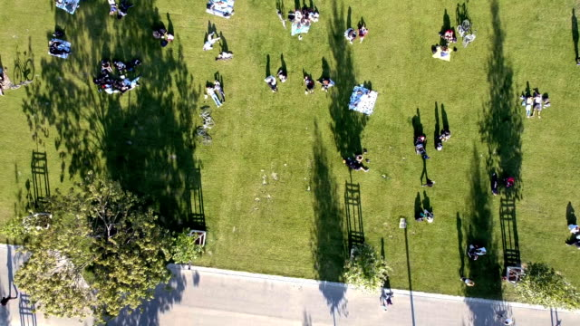 over the mauerpark in berlin - natural parkland stock videos & royalty-free footage